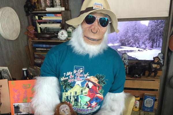 The Arctic Ape San Antonio
