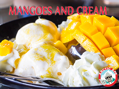 FROZEN-YOGURT-MANGO-CREAM-SAN-ANTONIO